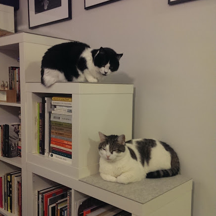 Well-read monochrome modernists love Expedit too